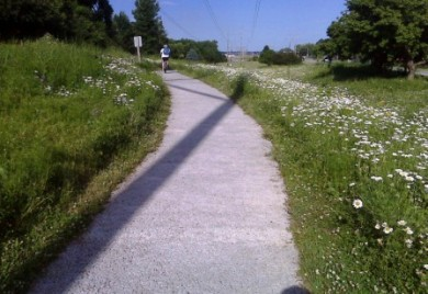 Bike Trail in Papillion